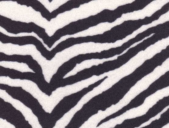 zebra print. Zebra Print