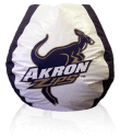Akron Zips Bean Bag Chair